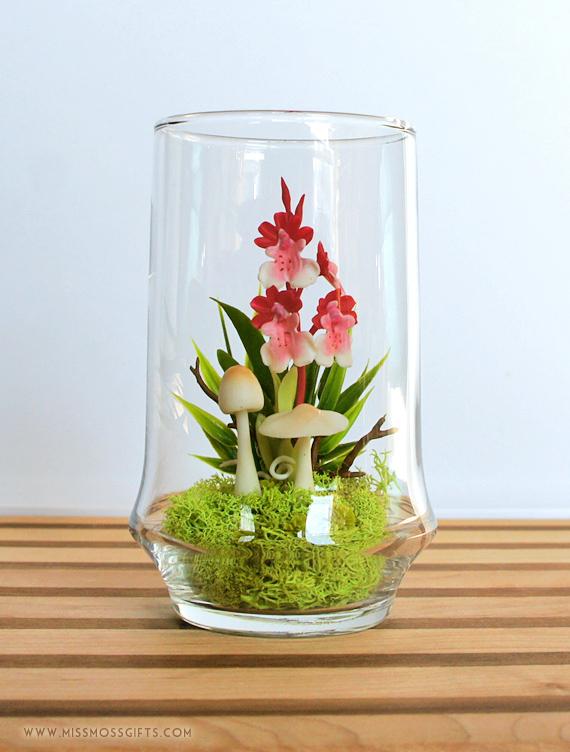 Tiny Red Dancing Lady Orchid Terrarium In Repurposed Vase On Luulla