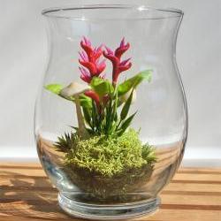 Miniature Exotic Heliconia Terrarium in Vintage Glass