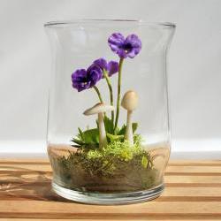 Tiny Purple Pansy Woodland Terrarium in Repurposed Glass